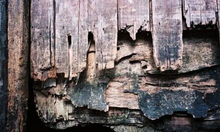 Six layers – Kodak Ektar 100 (35mm)