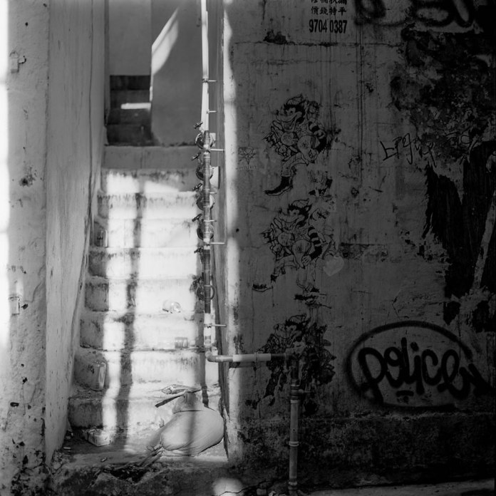 The Big Bad Wolf - Rollei Ortho 25 shot at EI 25. Black and white negative film in 120 format shot as 6x6.