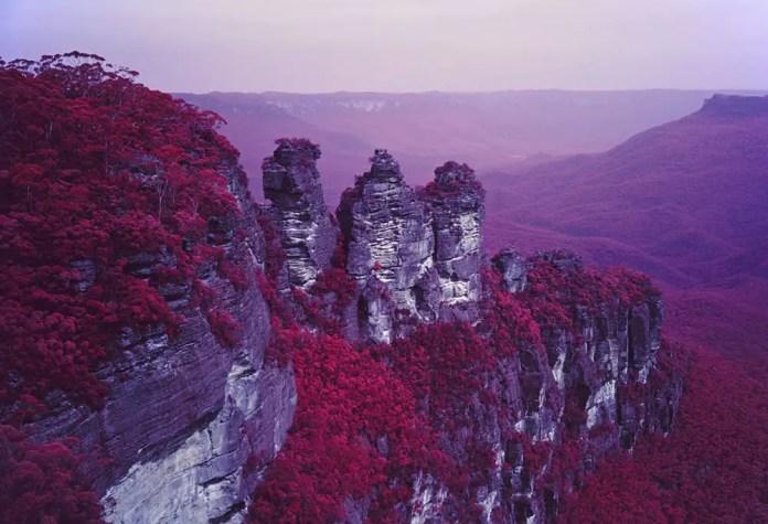 Red Sisters - Fuji GW690III, Kodak Aerochrome