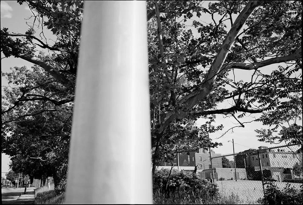 EMULSIVE x Kodak Alaris Community Interview: results time