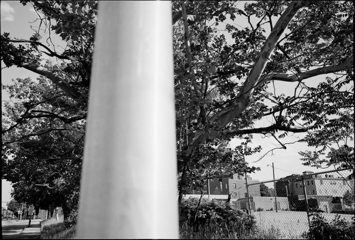 Kodak TMAX 400 (TMY-2) - Credit: Erik Gould
