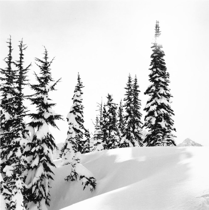 Sunburst - Mt Rainier - Bronica SQ-A - Ilford HP5+