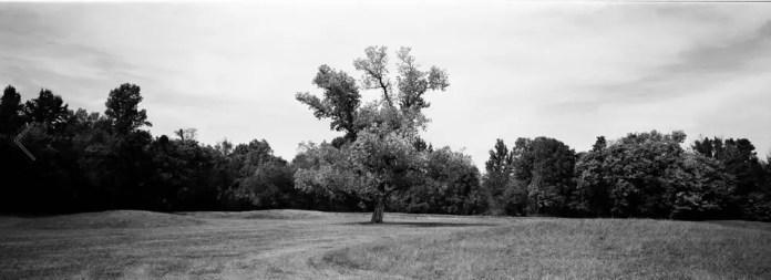 Hopewell Earthworks, Ohio, ADOX CHS II 100