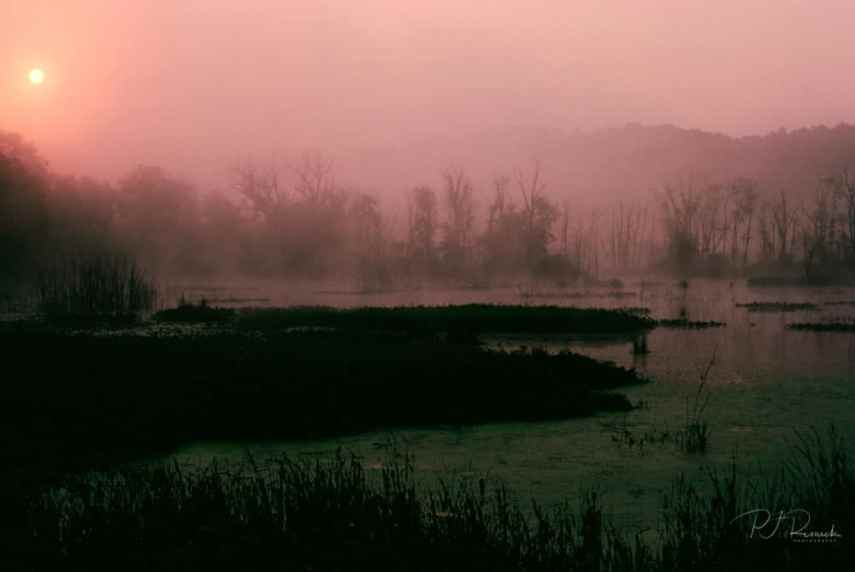 Kodachrome - Kodachrome Morning
