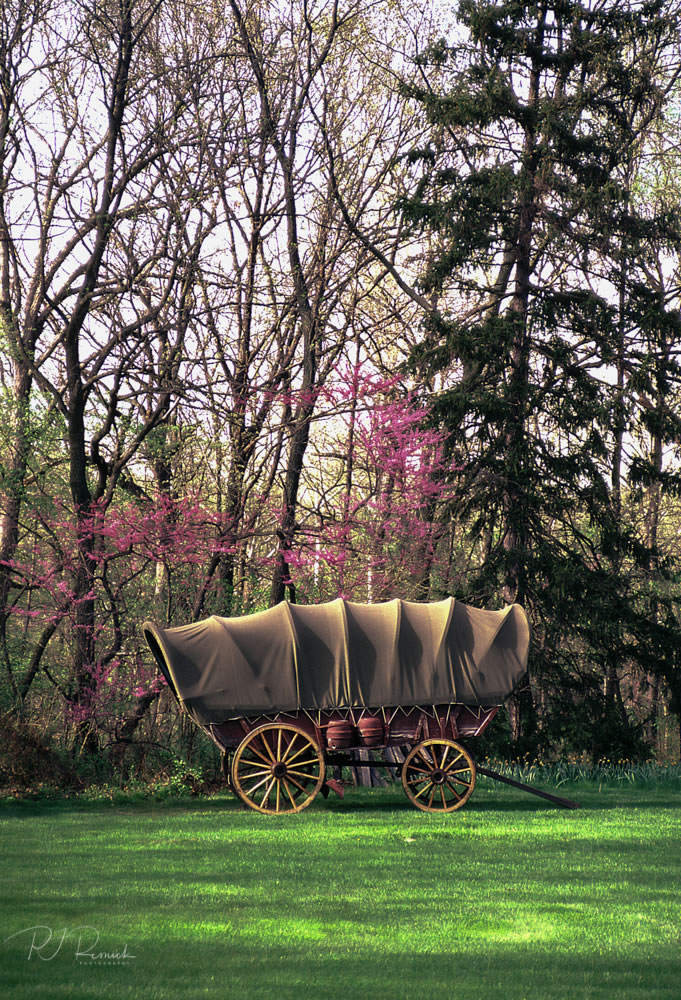 Kodachrome - Spring at Last