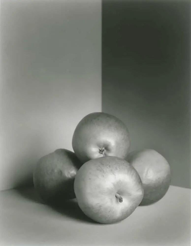 Nagaoka Seisakusho 4x5 - Apples