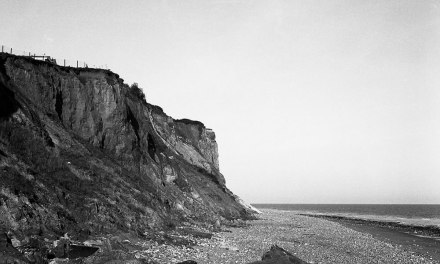 Finding film part 6: taking it slow with ILFORD Pan F Plus