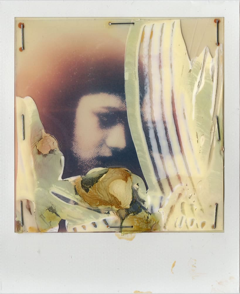 Rose - Mixed media, Polaroid manipulation, 2016
