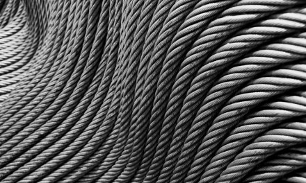 Coiled #03 – Shot on ADOX Silvermax 100 at EI 100 (35mm format)