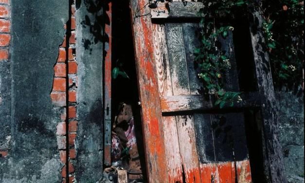 Unhinged – Shot on Kodak Ektar 100 at EI 100 (120 format)