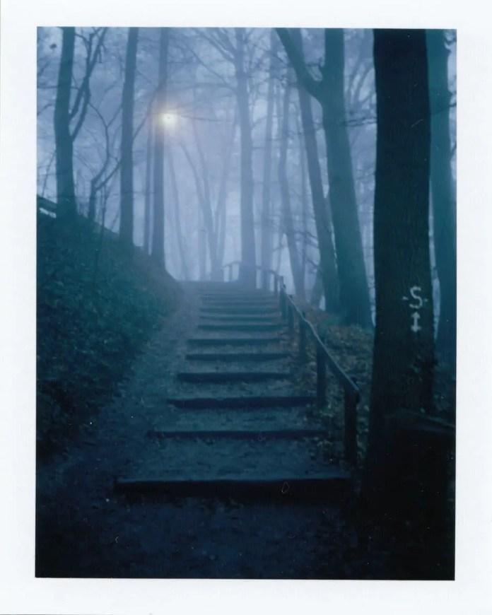 Polaroid Land camera 330, Fuji peel-apart film, Fp100-c Silk (Burg Plesse/Bovenden, Germany).