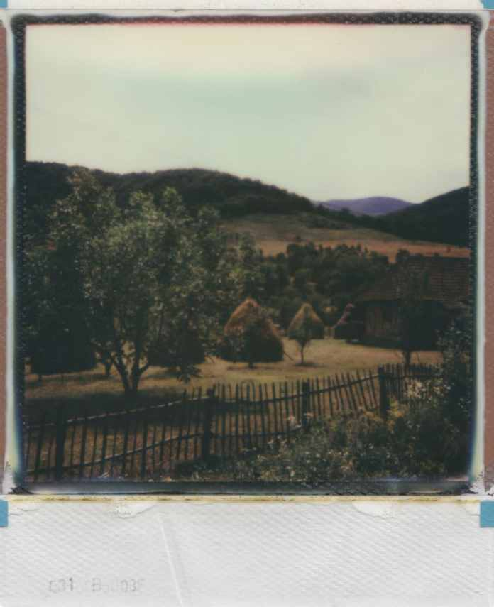 Polaroid AF Sun 660 camera, The Impossible Project coloured film (Hunedoara, Romania 2015).