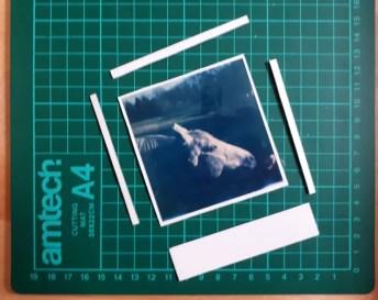 Tutorial step 1: cutting up the Polaroid sheet
