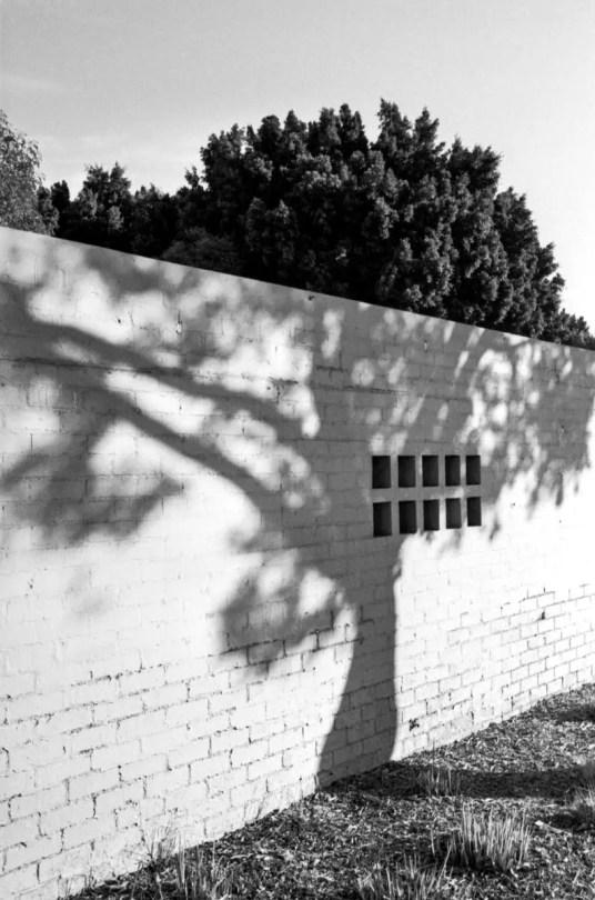 Kodak Tri-X 400 - Leica M6 TTL - James King