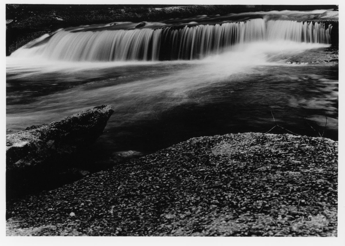 5 Frames With - ILFORD SFX 200 - Print 1