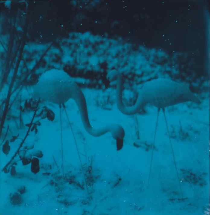 First Snow - Polaroid SLR680, Glitter on Polaroid Originals 600 Duochrome film