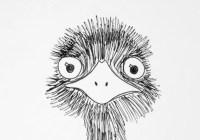 EMU - Cover