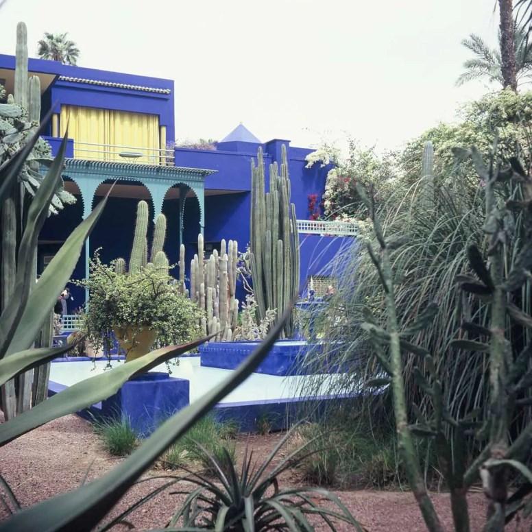 Kodak EKTACHROME E100G - Majorelle Gardens