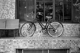 Kodak T-MAX 3200 (EI 800 - N-2) 7artisans 35mm f/2