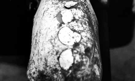 Mud guard – Shot on Kosmo Foto Mono 100 at EI 100 (35mm format)