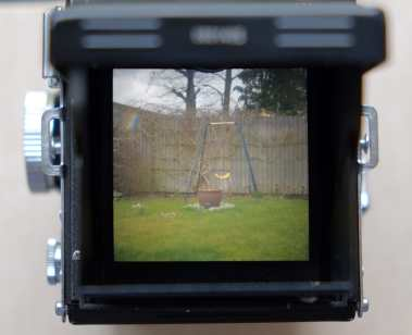 Yashica Mat-124 - Ground glass
