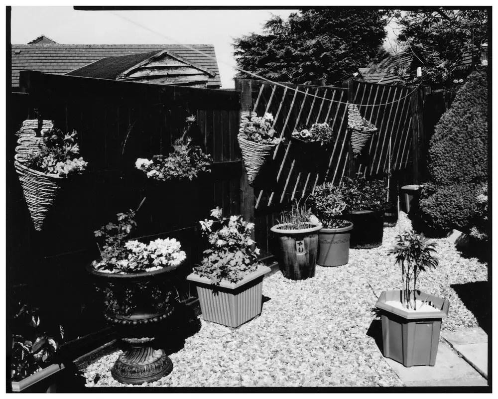 Harman Direct Positive Paper - Garden