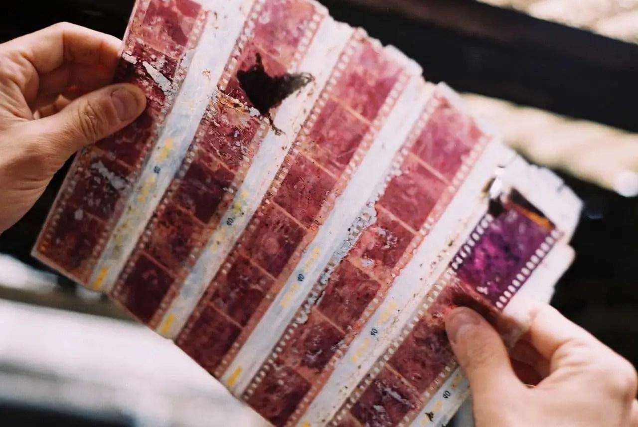 Forever memories - Shot on Fuji Premium 400 at EI 400. Color negative film in 35mm format.