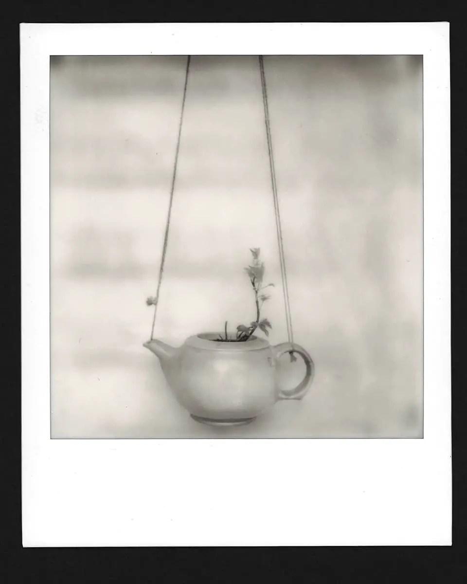 Polaroid Originals SX-70 B&W (SX-70, EI 160, Mint SLR 670m), Martin Banas