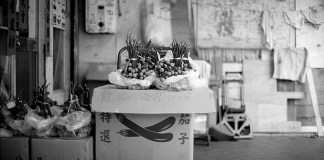 Longan - Shot on Efke KB25 at EI 25. Black and white negative film in 35mm format. Nikon FM3A / Nikkor 50mm f/1.2.