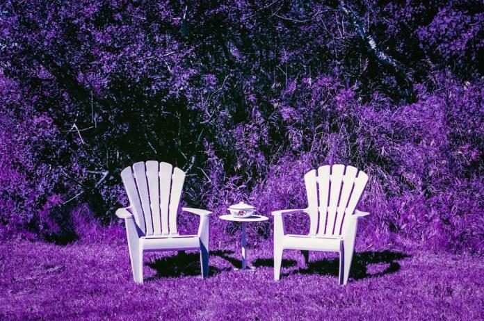 Lomography LomoChrome Purple XR 100-400 - EI 100-400 - 35mm - Nikon FE - Sherry Christensen