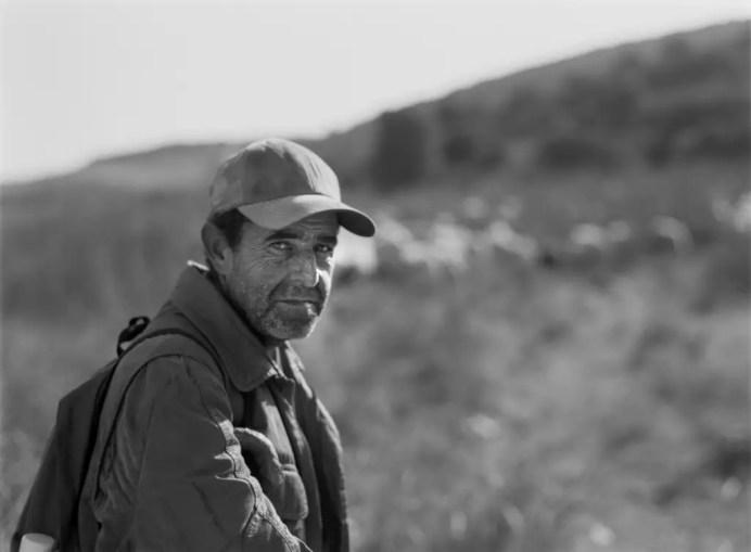 Portuguese shepherd - Mamiya 645E 80mm f/1.9 @f/1.9, ILFORD PAN F Plus