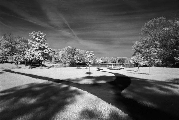 Rollei 400 Infrared (EI 400 / 135 / Nikon FE) - by Daniel Novak