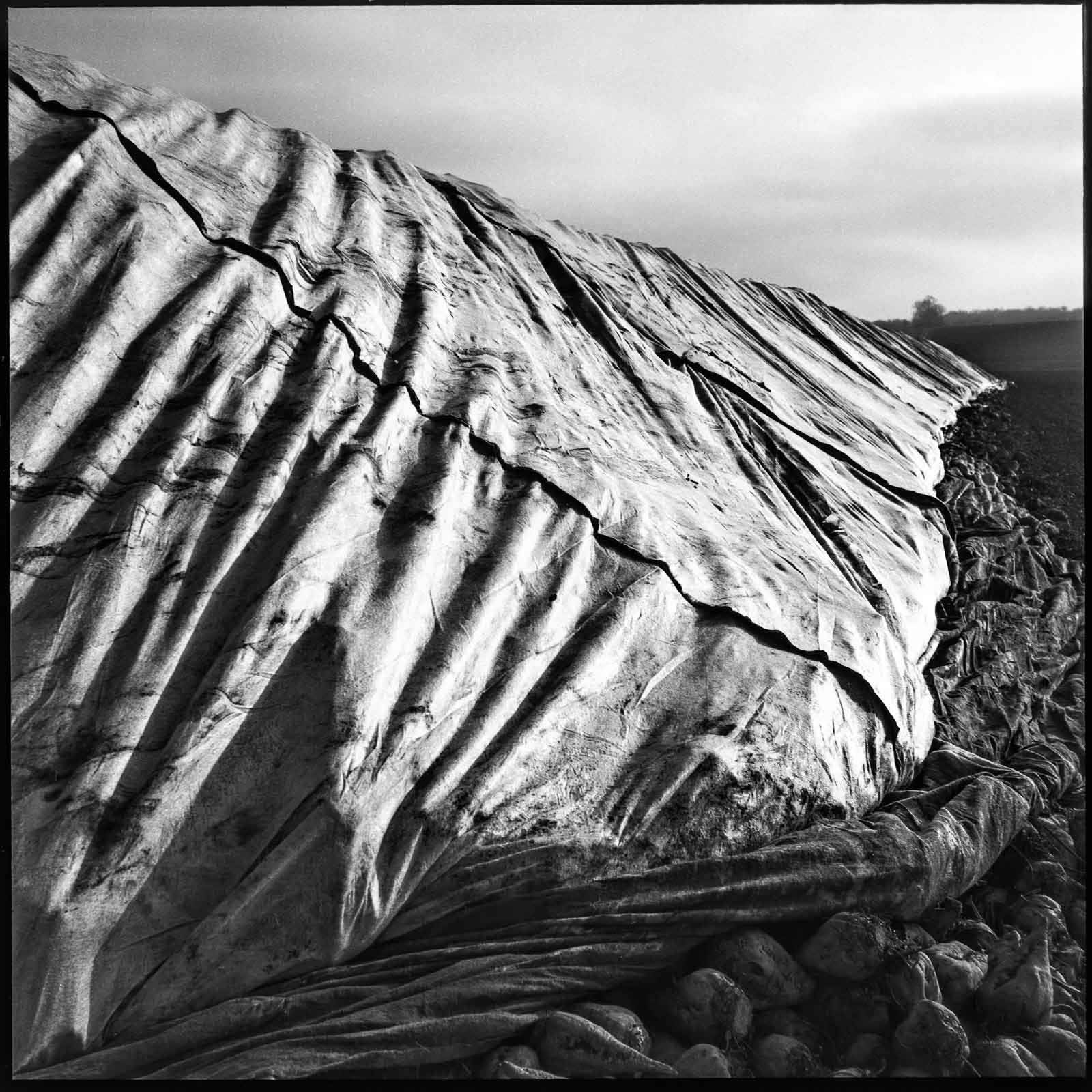 Tarpaulin covers shot on Ilford Pan F, HC110 solution E