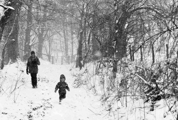 Winter Walk - Nikon F100, ILFORD HP5 PLUS