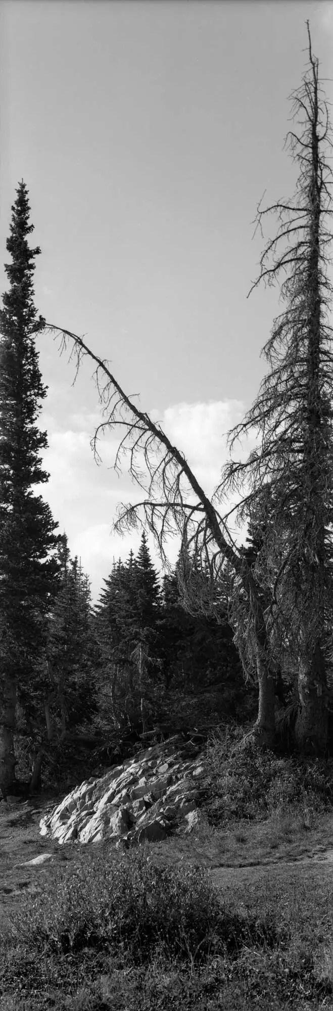 Mirror Lake - vertical panorama.