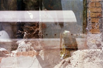 5 Frames With... Agfa Precisa CT 100 (35mm _ EI 100 _ Pentax K-1000) - by Catherine Bruce