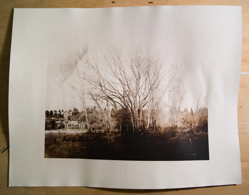 "It's the untoned fomatone print I started the ""Making a print"" section with"