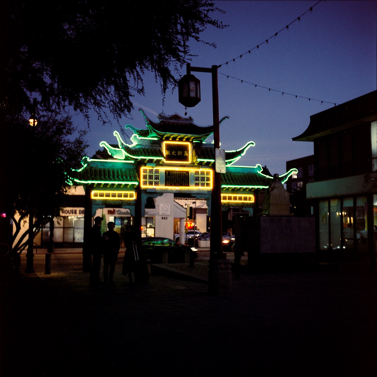 5 Frames With... Cinestill 800T (EI 1600 / 120 / Rolleiflex K4B) - by Laura Pardo