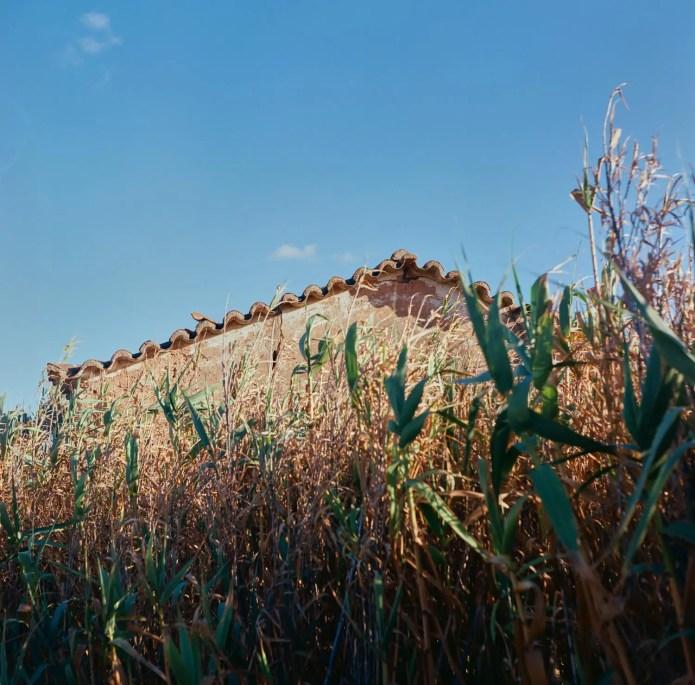5 Frames With... Kodak Ektar 100 (EI 100 / 120 / Yashica-Mat LM) - by Damián Canteros