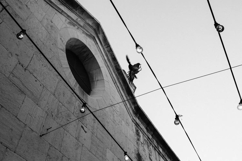 Via Dolorosa - Cristian Geelen