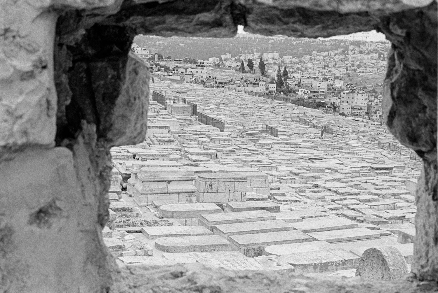 Mount of Olives - Cristian Geelen
