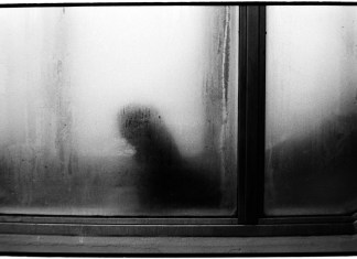 5 Frames With… Kodak EASTMAN Double-X 5222 (EI 200 / 35mm / Nikon FE2) - by Justin Emanuel