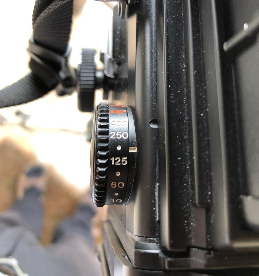 Mamiya RZ67 - Set the shutter speed