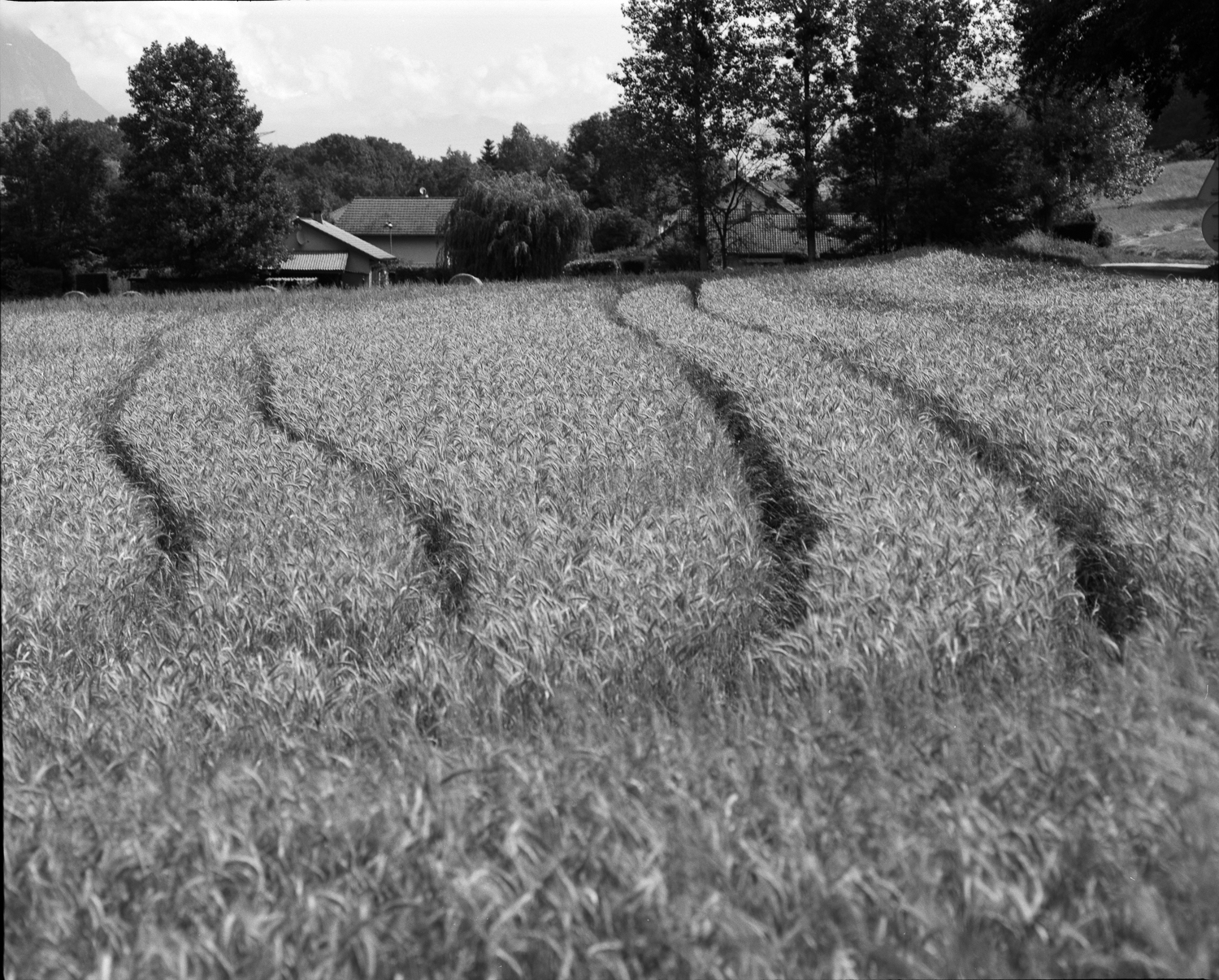 A field with traces in Rotherens (Savoie)