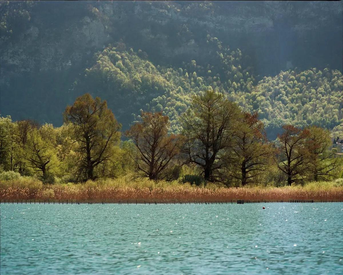 Mamiya RZ67 Professional - 350mm, Kodak Ektar 100, Lac d'Aiguebelette (Savoie)