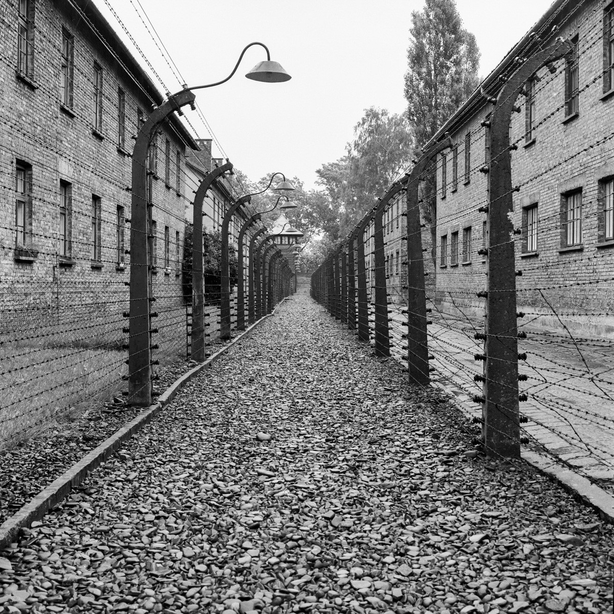 Auschwitz - Hasselblad 501CM, Kodak Tri-X 400 - Krakow, Poland