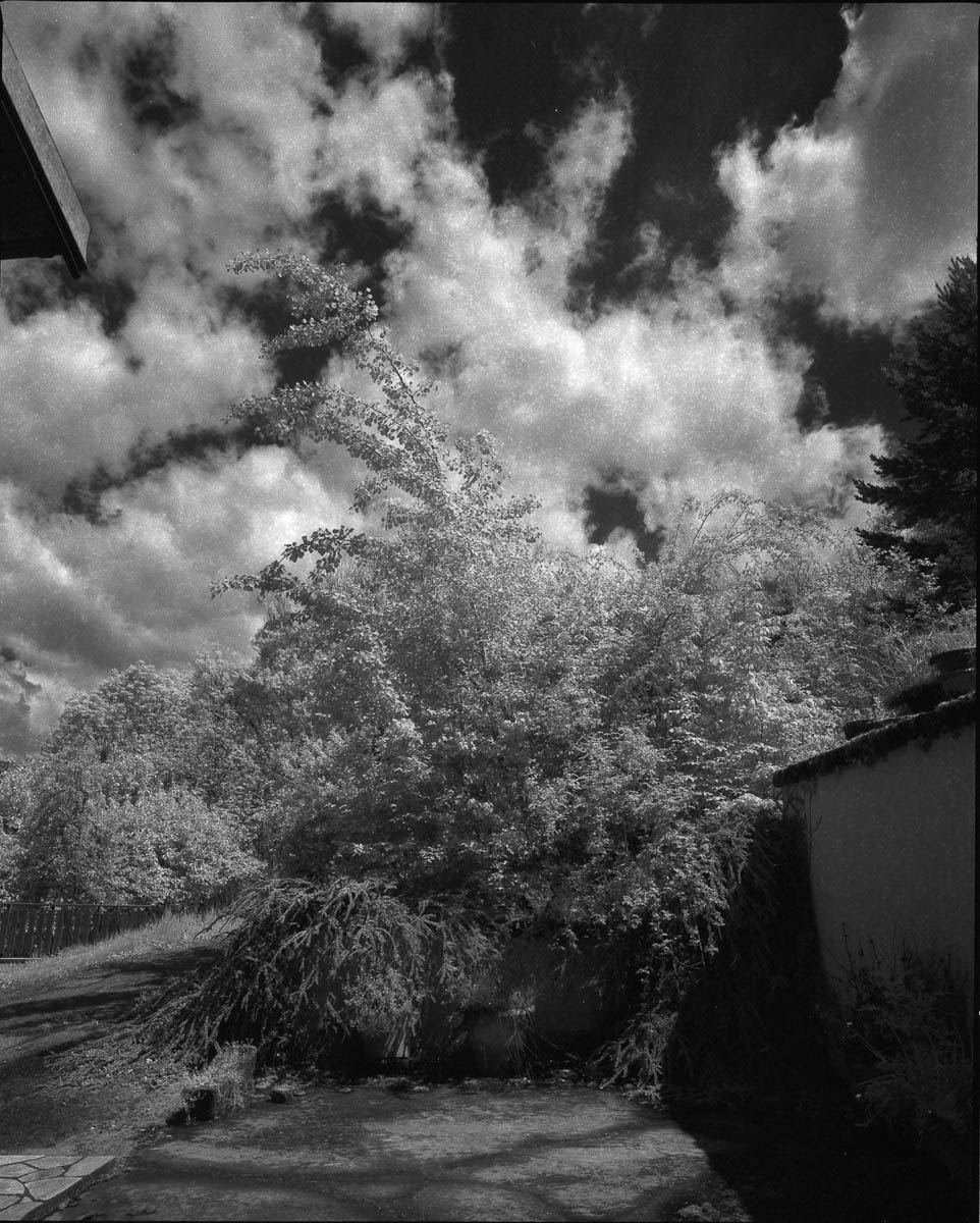 Mamiya RZ69 Pro II + 50mm f/4.5W + 720 IR Filter - ILFORD SFX 200 - La Table (Savoie)