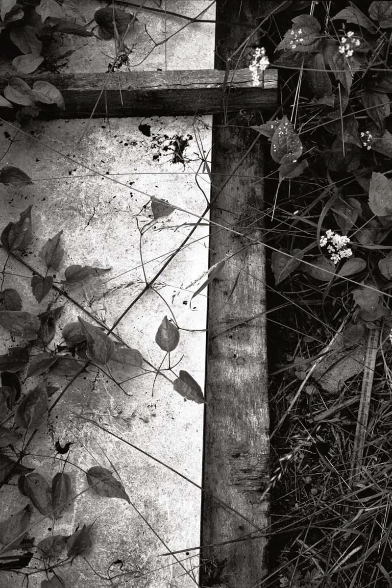 Human Remains / Restes humains - Kodak Tri-X 400, Jacopo Brancati