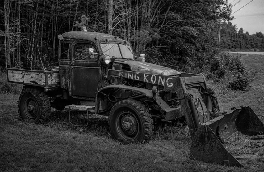 King Kong, Route 1, ME, 2019 - Fuji GW 690II, ILFORD HP5 PLUS