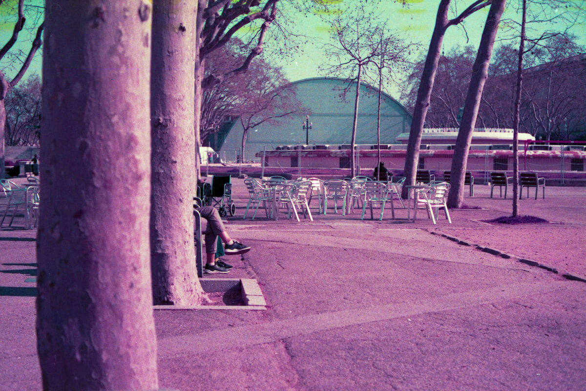 REscanning boutique and special effect films: Revisiting my 5 Frames with LomoChrome Purple XR 100-400